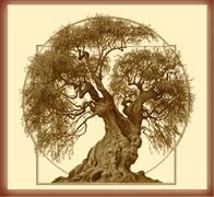 Joseph Brickey Tree
